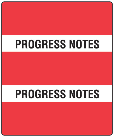 300 Series Create Your Own Patient Chart Divider Tab Progress Notes  1-1/2
