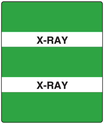 300 Series Create Your Own Patient Chart Divider Tab X-Ray  1-1/2