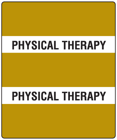 300 Series Create Your Own Patient Chart Divider Tab Bronze Physical Therapy  1-1/2