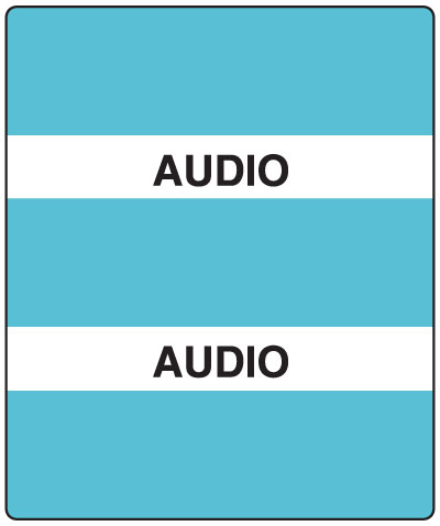 300 Series Create Your Own Patient Chart Divider Tab Audio  1-1/2