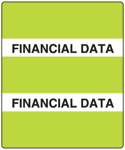 300 Series Create Your Own Patient Chart Divider Tab LimeFinancial Data  1-1/2