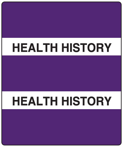 300 Series Create Your Own Patient Chart Divider Tab Purple Health History   1-1/2