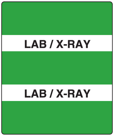 300 Series Create Your Own Patient Chart Divider Tab Lab/X-Ray   1-1/2