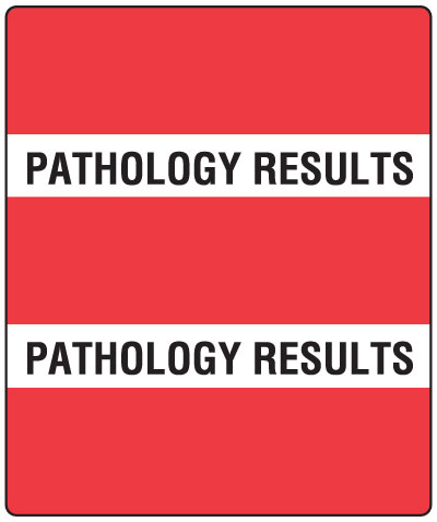 300 Series Create Your Own Patient Chart Divider Tab Pathology Results   1-1/2