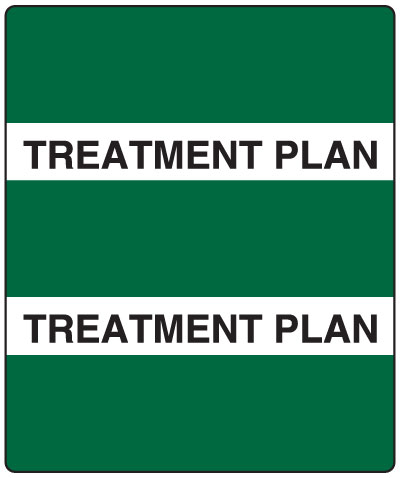 300 Series Create Your Own Patient Chart Divider Tab Treatment Plan   1-1/2