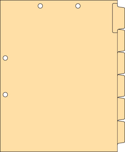 Clear Writable Index Chart Divider Set  1/6 Cut Side Tab White 110 lb Index Hole punched at Top and Side
